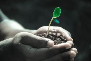 4 Tipps: was mich weiterkommen und wachsen lässt